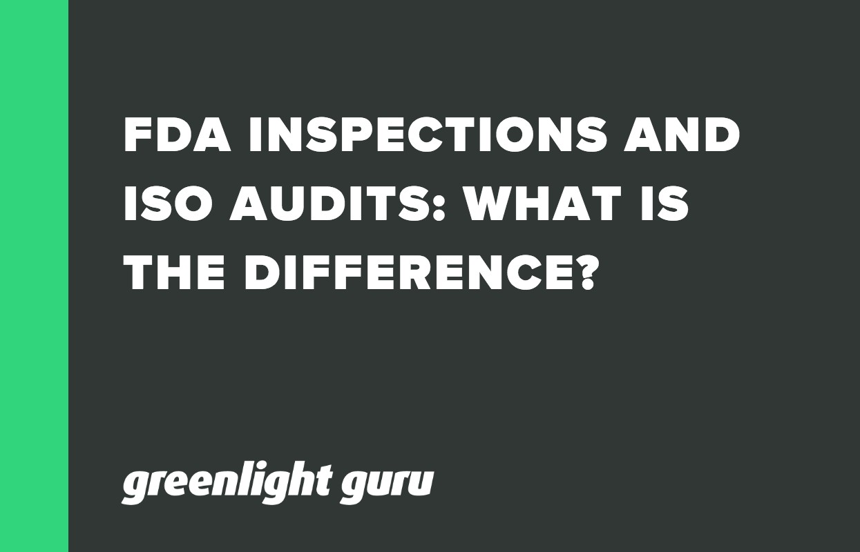 FDA INSPECTIONS AND ISO AUDITS_ WHAT IS THE DIFFERENCE_-1