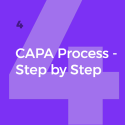 CAPA_Process_Step_by_Step_4.png