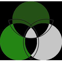 icon-strive