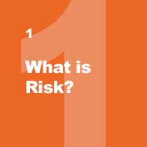 what is risk report